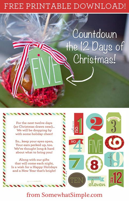 image relating to 12 Days of Christmas Printable called Xmas Crafts : 12 Times of Xmas Totally free Printable Present